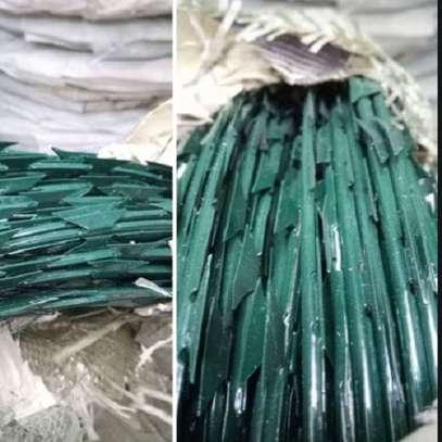 Green razor wire