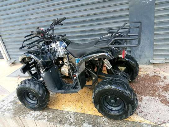 110cc new quad bike