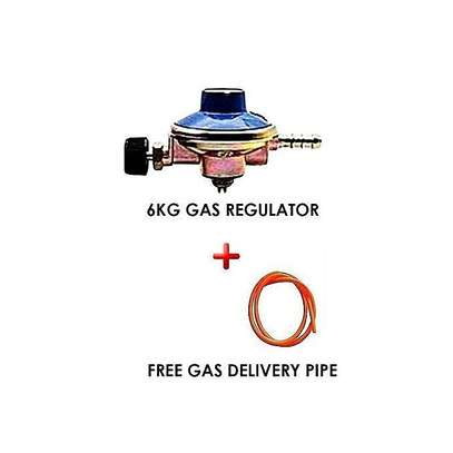 Generic 6kg Gas Regulator Plus FREE 2M Gas Delivery Pipe image 1