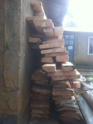 Tree felling/ frame making image 10