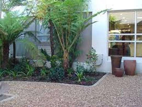 Garden Maintenance Services | Hire Best Gardeners When You Need Them | Contact us today! image 11