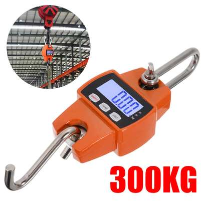 Crane digital scale with large LCD display and adapted stainless steel hooks 300kg image 1