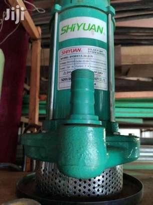 Shiyuan SOLAR submersible pump image 1