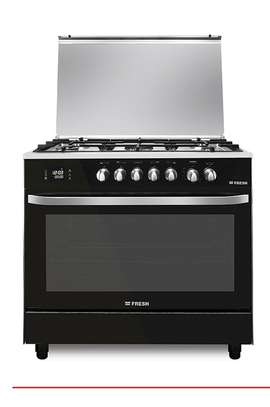 Fresh Gas Cooker image 1