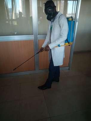 BED-BEGS CONTROL SERVICES IN NAIROBI KENYA. image 1