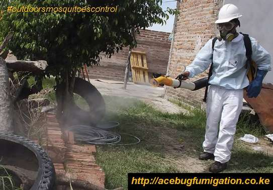 Acebug Fumigation Company image 15