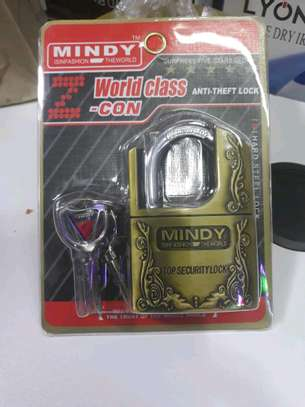 Mindy Top Security Padlock image 1