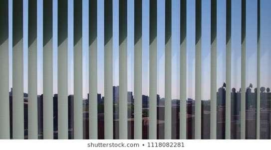 Best Roller & Vertical Office Blinds image 2