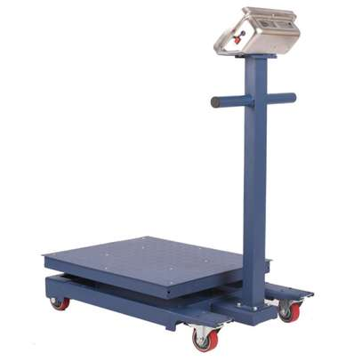 Heavy Duty Body 600kg/50g blue Color Platform Weigh Scale image 1