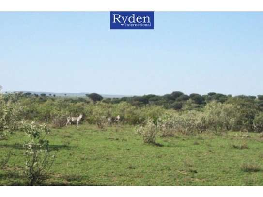 land for sale in Naivasha East image 3