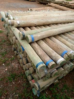 Treated fencing poles and services image 1