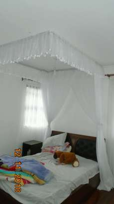 Mosquito Nets Sliding Like Curtains Fixed On The Ceiling image 8