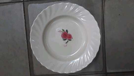 Melamine  Dinner Plate image 3