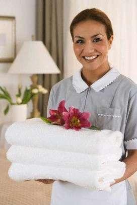 Hotel housekeeping service image 1