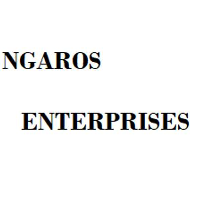 Ngaros Enterprises image 1