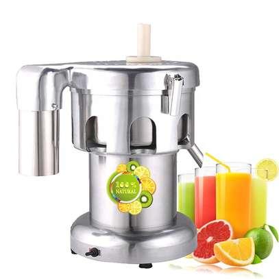 Commercial Cold Press Juicer Industrial Juicer image 1