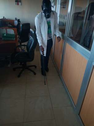 BED-BEGS CONTROL SERVICES IN NAIROBI KENYA. image 2