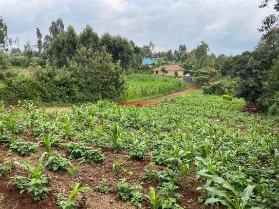 Kikuyu Town - Residential Land, Land image 1