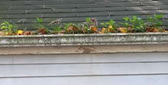 Bestcare Gutter Cleaning and Repairs image 5