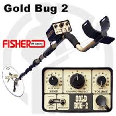 gold bug2                                                                                                                                                                                                                                                                                 gold bug2 image 1