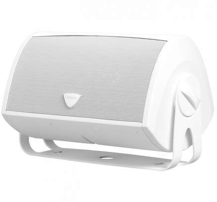 Definitive Technology AW5500 Outdoor All-Weather Loudspeaker image 5