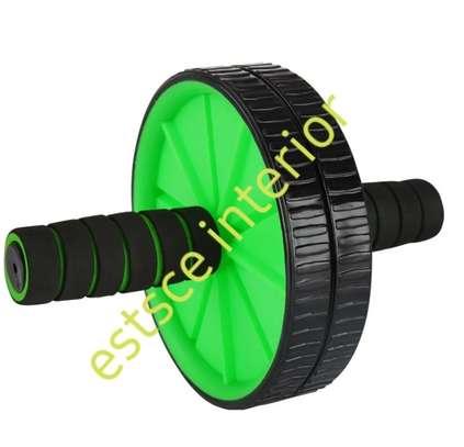 Gym roller image 1