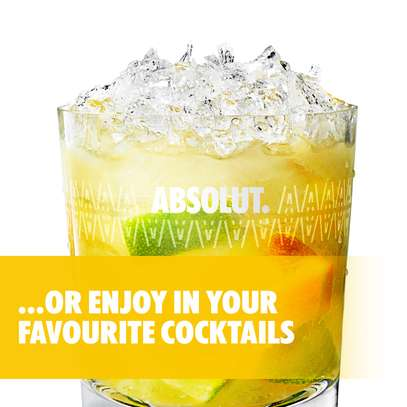Absolut Mango Flavored Vodka - 750ml image 4