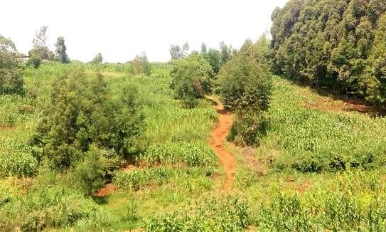 Land for sale in Gitaru