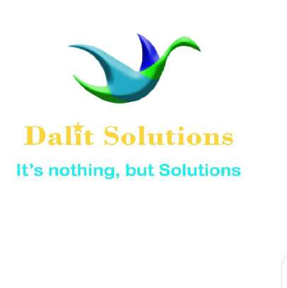 Dalit Solutions image 2