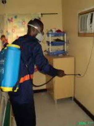 Bed Bug Fumigation & Pest Control Specialists