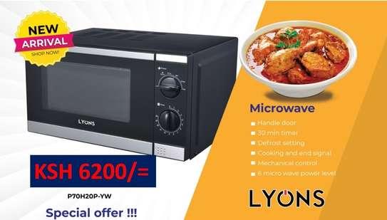 microwave image 1