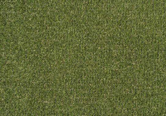 grass carpet influence on beauty and texture image 7