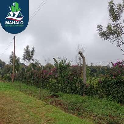 0.5 ac land for sale in Limuru Area image 5