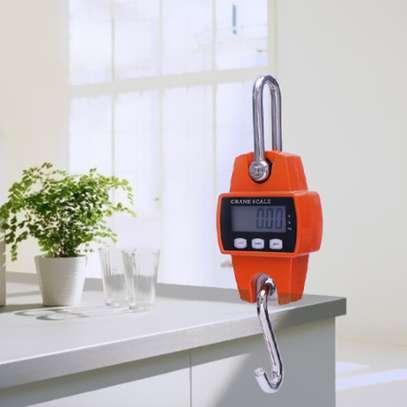 300Kg Digital Hanging Mini crane Weighing Scale image 1