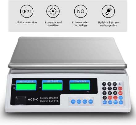 electronic 30kg digital Price Computing Scale.