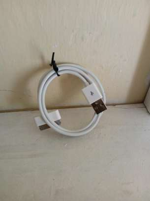 Apples/iPhones chargers and earphones