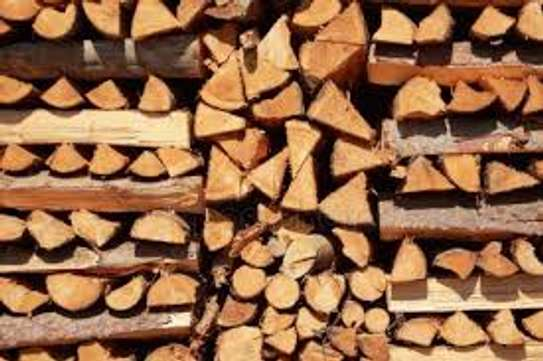 Firewood For Sale - Delivered to You Nairobi image 13