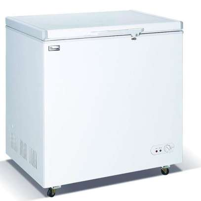 Ramtons CF/232 - 190L Freezer + Icepak Ext Condenser - White image 1