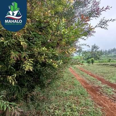 0.5 ac land for sale in Limuru Area image 8