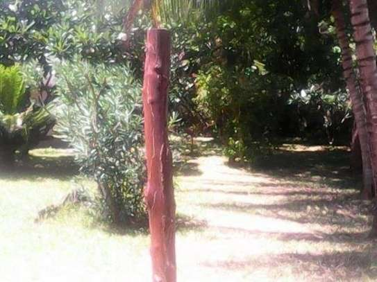 Furnished 4 bedroom house for rent in Malindi Town image 3