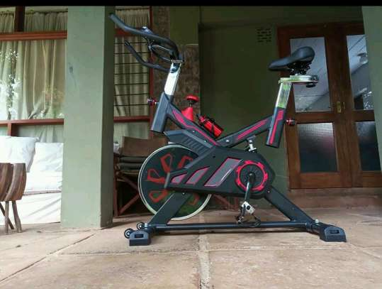 S100 spin bike image 1