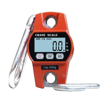 electric balance 300kg   crane weighing digital scale with hook image 1