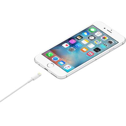 Apple Lightning to USB Cable (1M) image 3