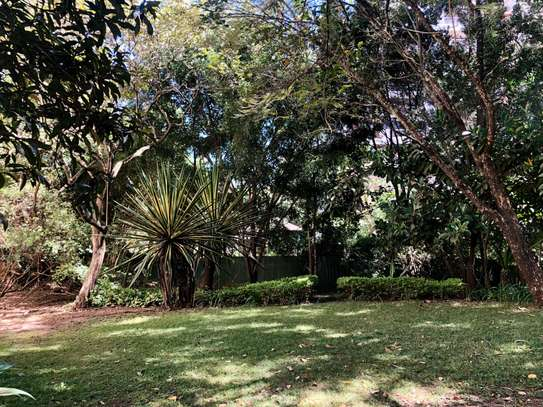 2 bedroom house for rent in Lavington image 13
