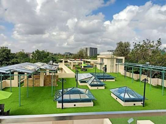 3 bedroom apartment for rent in Spring Valley image 9