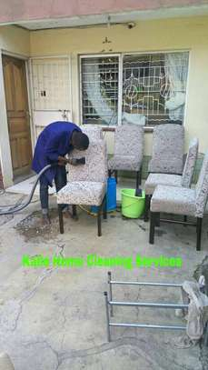 Sofa Cleaning image 7