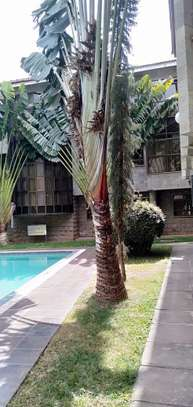 2 bedroom apartment for rent in Milimani image 20