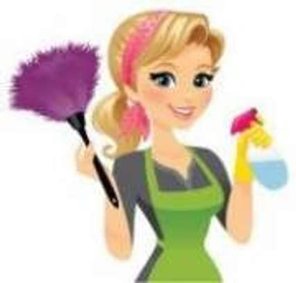 Residential and Office Cleaning Services