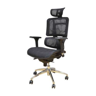 Florence Genuine Orthopedic Chair