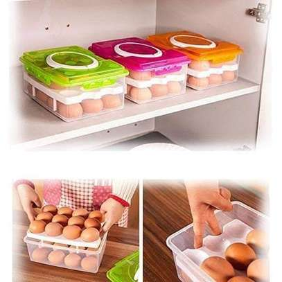 Egg storage image 1